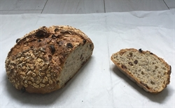 Picture of Seeded Raisin & Oats (500g)