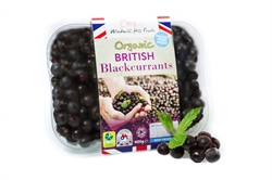 Picture of Herefordshire Blackcurrants