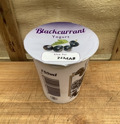 Picture of Live Creamy Blackcurrant Yogurt