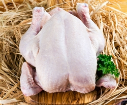 Picture of Whole Chicken, Medium
