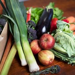 Picture of Seasonal Fruit & Veg Box, Medium