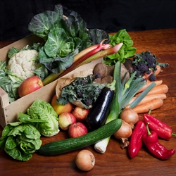Picture of Seasonal Fruit & Veg Box, Large