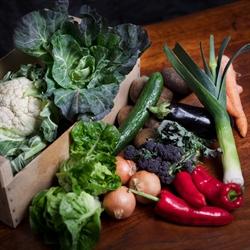 Picture of Seasonal Veg Box, Medium