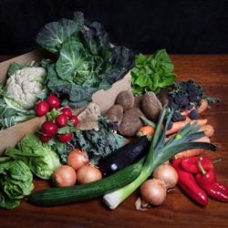 Picture of Seasonal Veg Box, Large