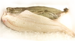 Picture of Cod Fillet